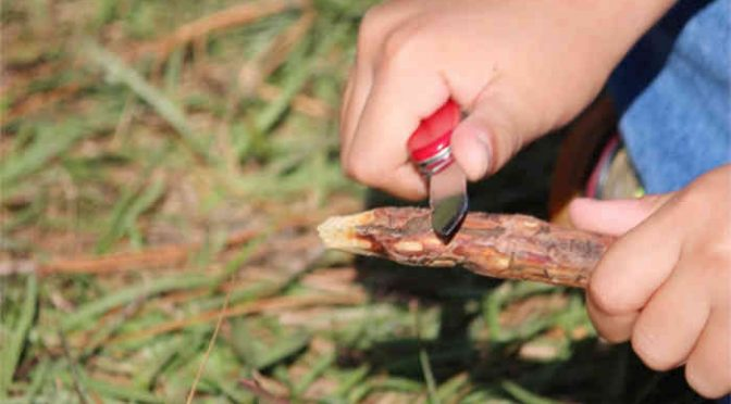 The Truth About Whittling And The Whittling Knife